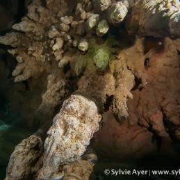 ©-Sylvie-Ayer-Micronesia-cavern-2