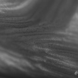 2014-07-11_DSC_9394